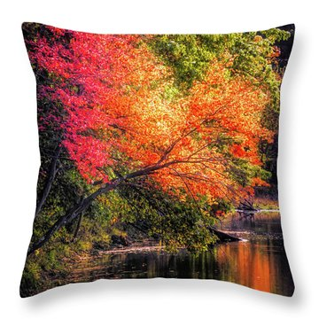 Foliage Over Forge Pond Throw Pillow