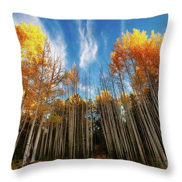 Follow The Yellow Leaf Road Throw Pillow