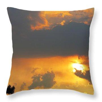 Forest Grove Solar Storm Throw Pillow