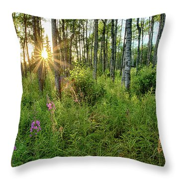Forest Growth Alaska Throw Pillow