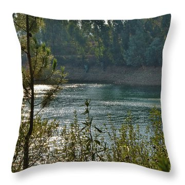 Forest Lake In Amendoa Throw Pillow