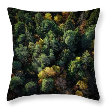 Forest Landscape - Aerial Photography Throw Pillow