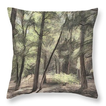 Forest Light Sketch Throw Pillow