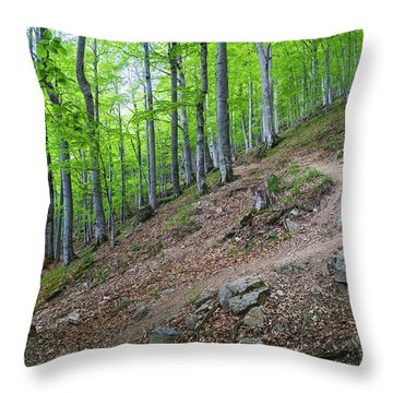 Forest On Balkan Mountain, Bulgaria Throw Pillow