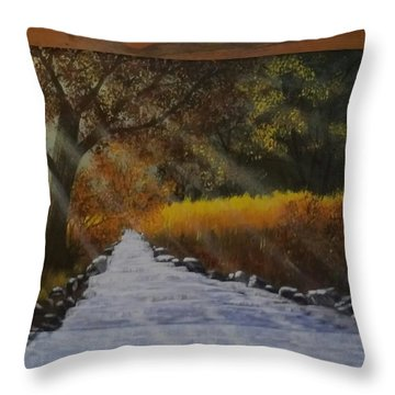 Forest Sunrays Over Water Throw Pillow