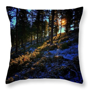 Throw Pillow featuring the photograph Forest Sunrise by Dan Miller