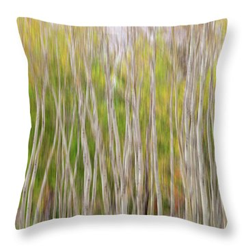 Throw Pillow featuring the photograph Forest Twist And Turns In Motion by James BO Insogna