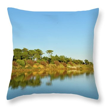 Forests Mirror Throw Pillow