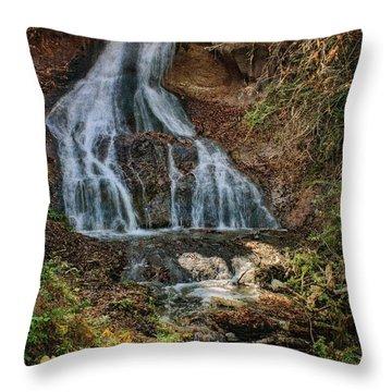 Fort Falls - Nebraska Throw Pillow