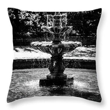 Fountain B W Throw Pillow