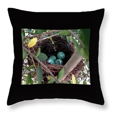 Throw Pillow featuring the photograph Four In A Nest by Belinda Landtroop
