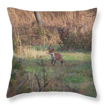 Fox On Prowl Throw Pillow