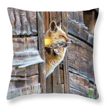 Fox Test  Throw Pillow