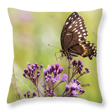 Fragile Wings Throw Pillow