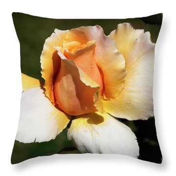 Fragrant Rose Throw Pillow