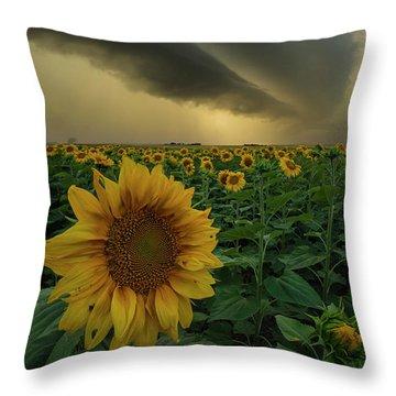 Throw Pillow featuring the photograph Frailty  by Aaron J Groen