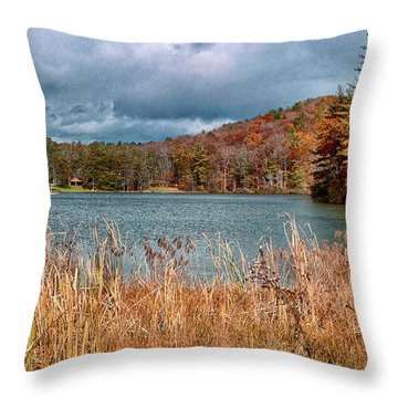Framed Lake Throw Pillow