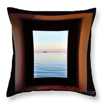 Framing The Frame Throw Pillow