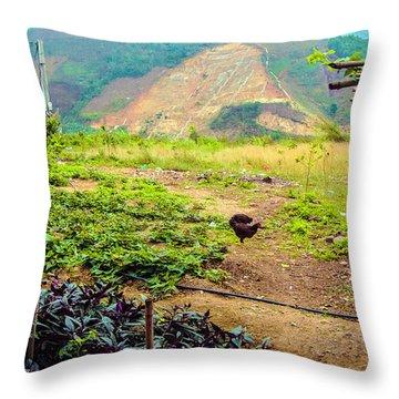 Free Range In Sapa, Vietnam Throw Pillow
