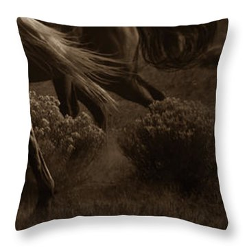Throw Pillow featuring the photograph Freedom II by Catherine Sobredo