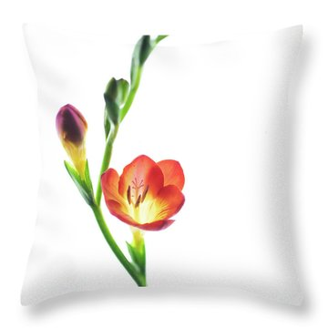 Freesia 2 Throw Pillow