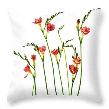 Freesia 3 Throw Pillow