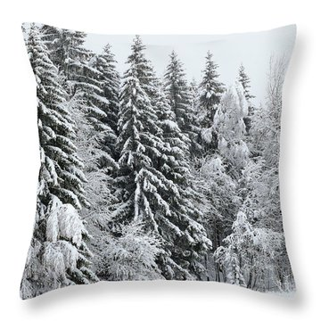 French Alps, Snow Covered Fir Trees In Winter  Photo Throw Pillow