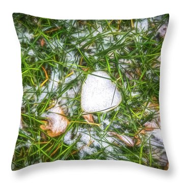 Throw Pillow featuring the photograph Fresh Snow by Jon Burch Photography