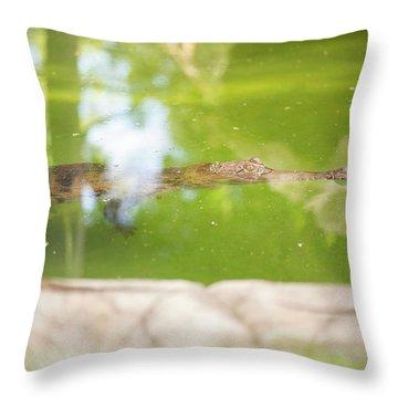 Freshwater Crocodile Throw Pillow