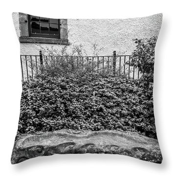 Friends Are Like Windows Through Which You See Out Into The World And Back Into Yourself Throw Pillow