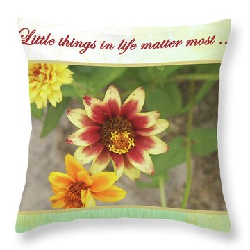 Friendship, A Smiling Indian Blanket Flower  Throw Pillow