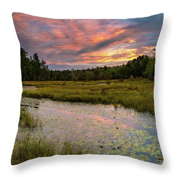 Friendship Panorama  Sunrise Landscape Throw Pillow