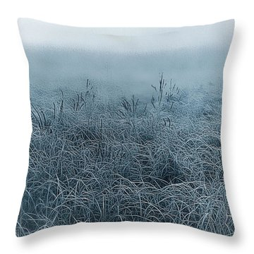 Frigid Morn Throw Pillow