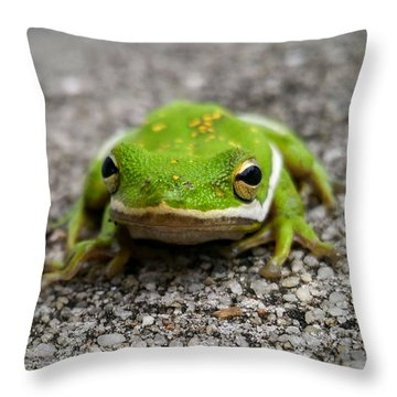 Throw Pillow featuring the photograph Frogger by Vincent Autenrieb