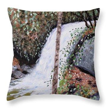Frolictown Falls Throw Pillow