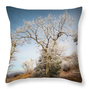 Frost On The Mountain Throw Pillow