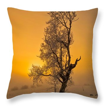 Frosted Tree Throw Pillow