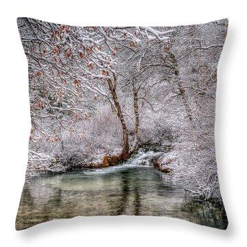 Frosty Pond Throw Pillow