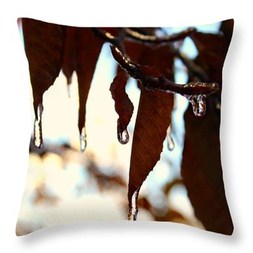 Throw Pillow featuring the photograph Frozen Autumn  by Candice Trimble