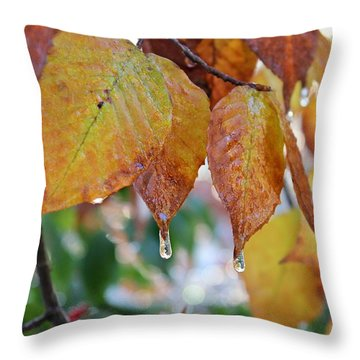 Throw Pillow featuring the photograph Icy Foliage by Candice Trimble