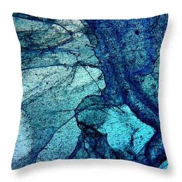 Frozen In Blue Throw Pillow
