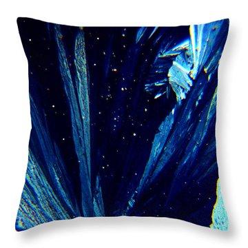Frozen Night Throw Pillow