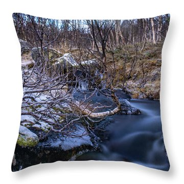 Frozen River And Winter In Forest Throw Pillow