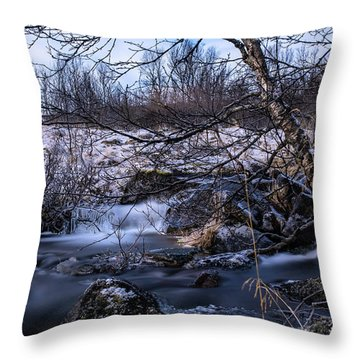 Frozen Tree In Winter River Throw Pillow