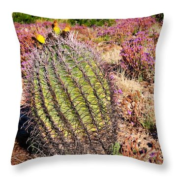 Fruit-bearing Barrel Cactus In Desert Rhubarb Throw Pillow