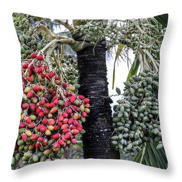 Fruity Palm Tree  Throw Pillow