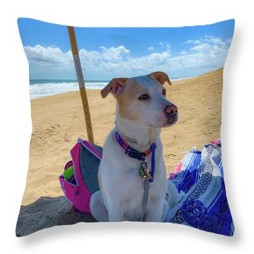 Throw Pillow featuring the photograph Fun Doggie Day At The Beach by Lora J Wilson