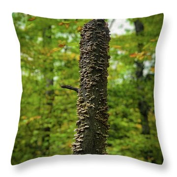 Fungus Among Us Throw Pillow