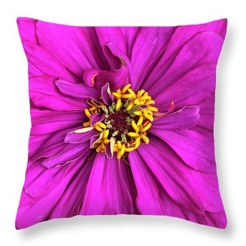 Fuschia Bloom Throw Pillow