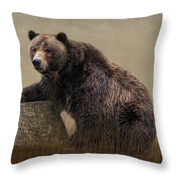 Gentle Ben Throw Pillow
